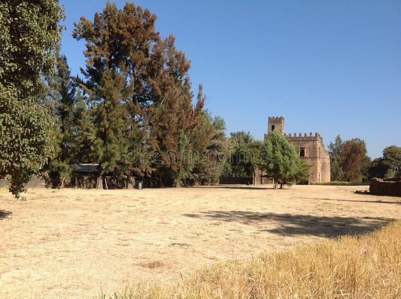 Castello Gondar Etiopia di Fasil fotografia stock libera da diritti