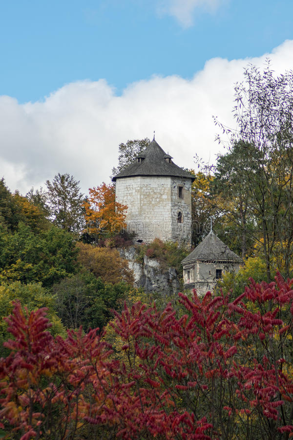 Castello gotico immagine stock