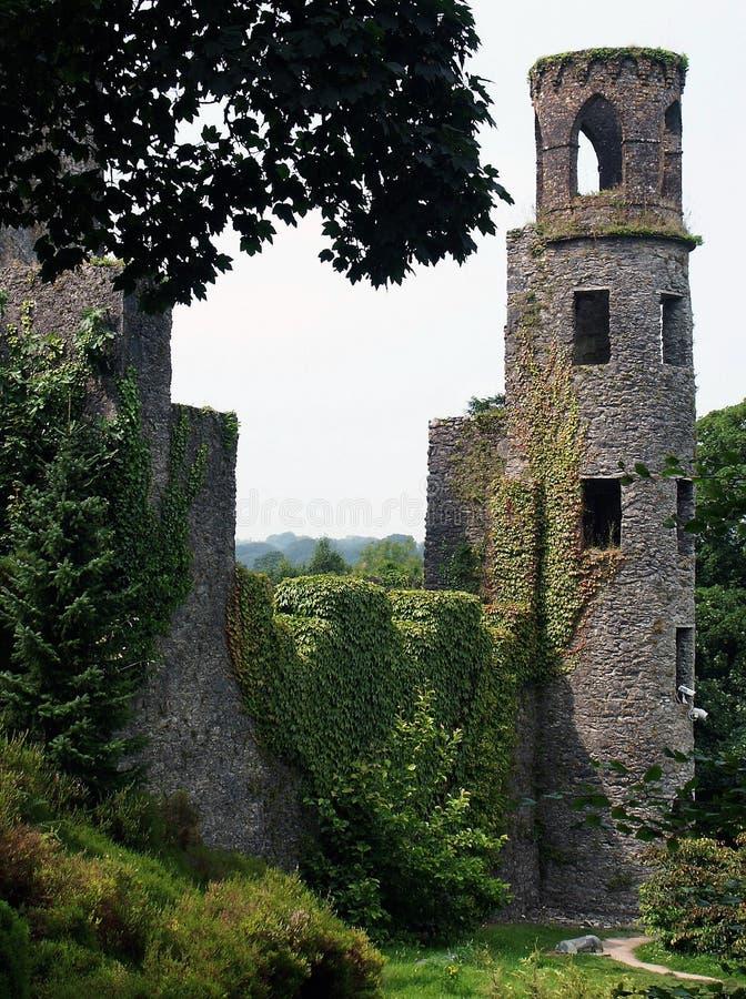 Castello irlandese fotografia stock libera da diritti