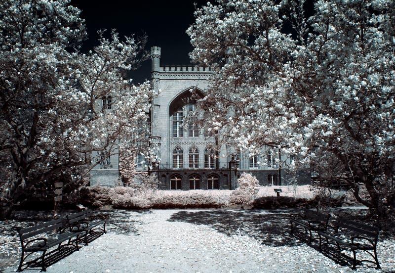 Castello in Kornik fotografie stock