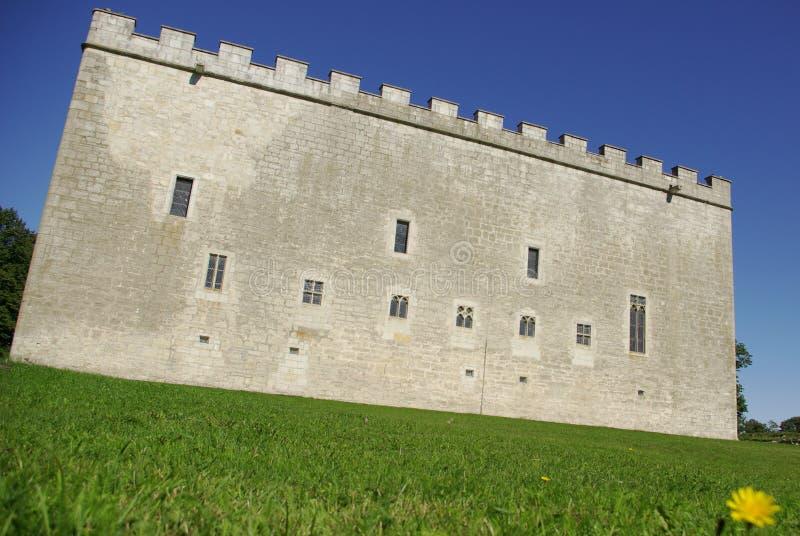 Download Castello medioevale immagine stock. Immagine di erba, forte - 3139379