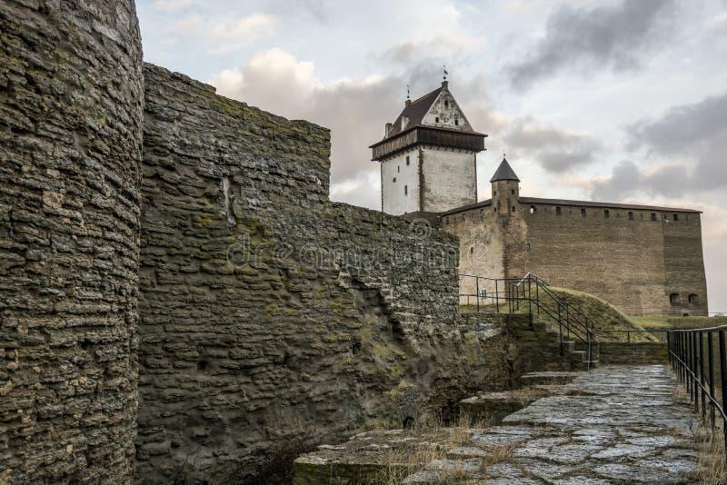 Castello in Narva, Estonia fotografia stock libera da diritti