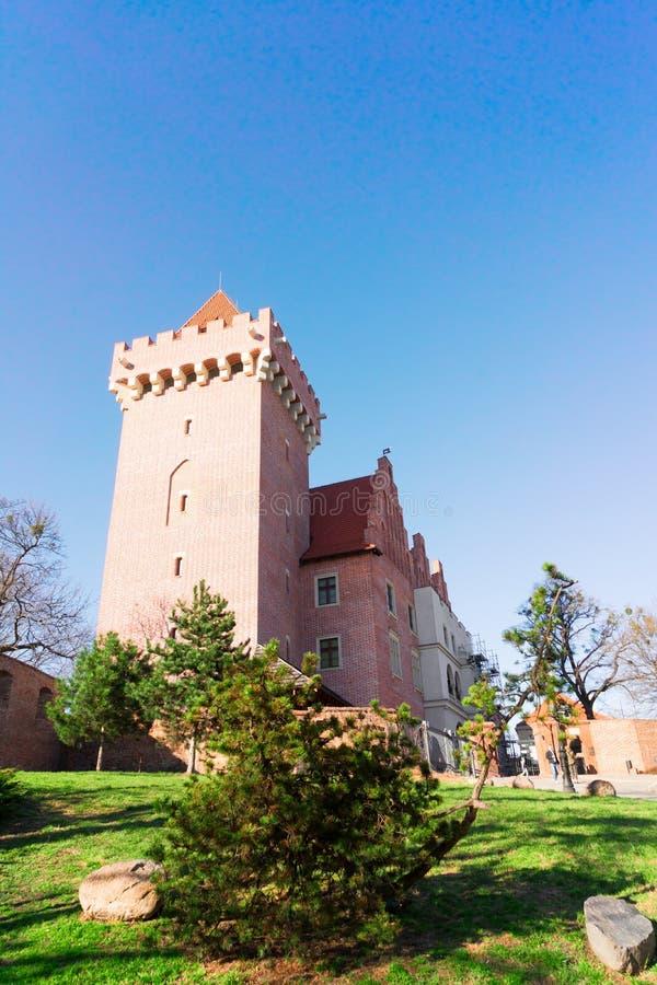 Castello reale di Poznan immagini stock libere da diritti