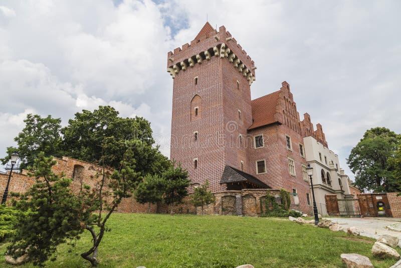 Castello reale a Poznan fotografie stock libere da diritti