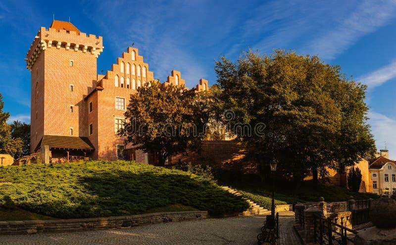 Castello reale a Poznan, Polonia fotografia stock