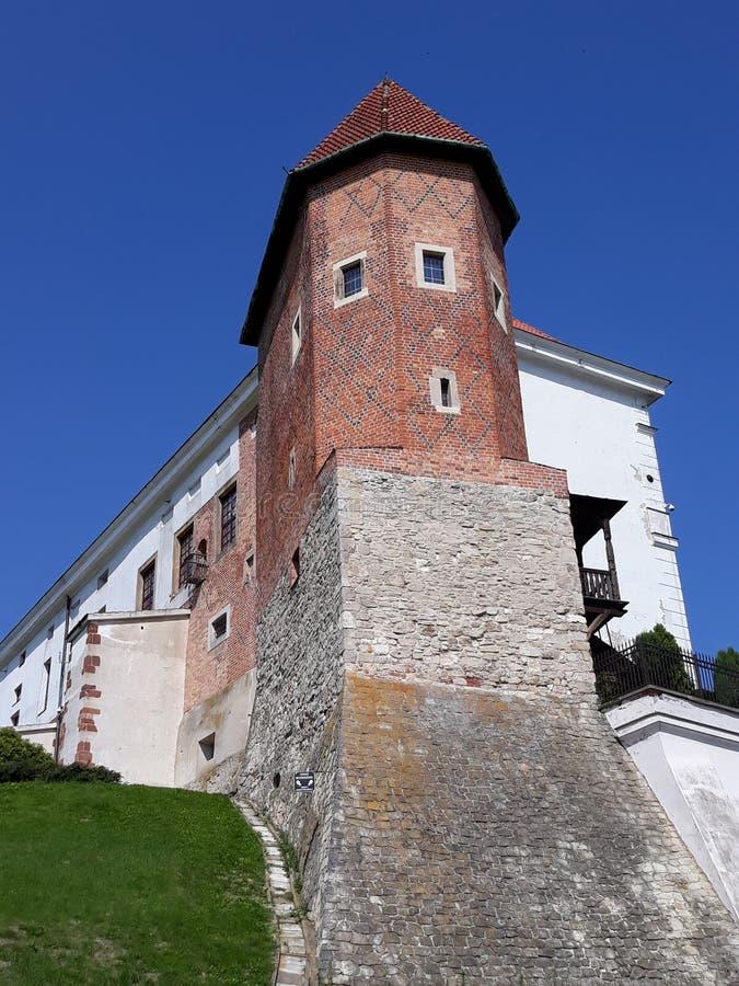 Castello reale in Sandomierz immagine stock libera da diritti