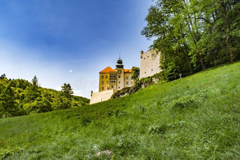 Castello storico Pieskowa Skala dal fiume di Pradnik nel parco nazionale di Ojcowski fotografia stock