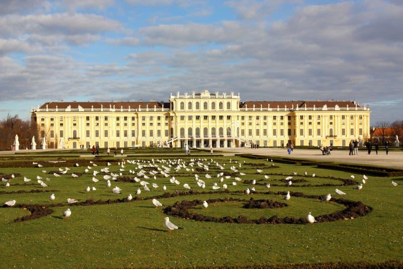 Castello in Wien, Austria di Schonbrunn immagine stock libera da diritti