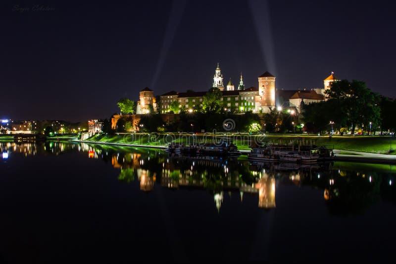Castello Zamek Krolewski - Cracovia, Polonia di Wawel immagine stock libera da diritti