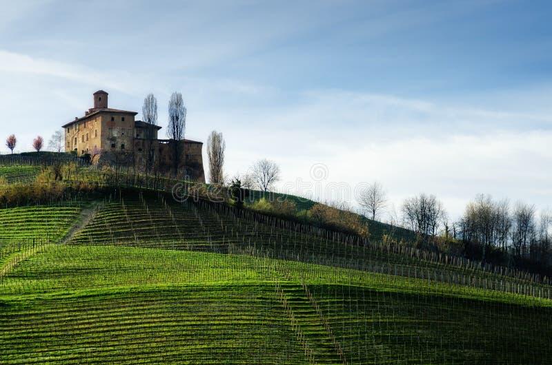 Castellodella Volta en wijngaarden Barolo, Italië stock afbeeldingen