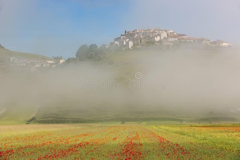 Castelluccio com papoila coloca na névoa da manhã, Úmbria, Itália fotos de stock