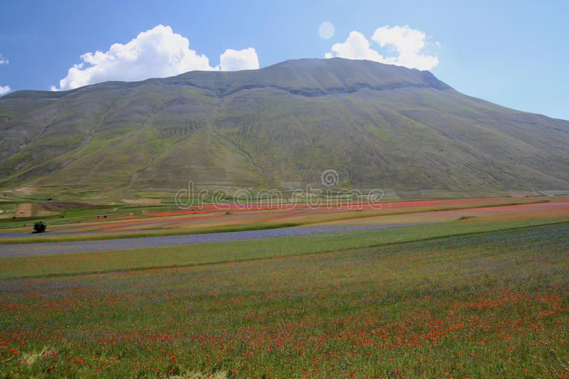 Castelluccio Di Norcia/bergenmening stock fotografie