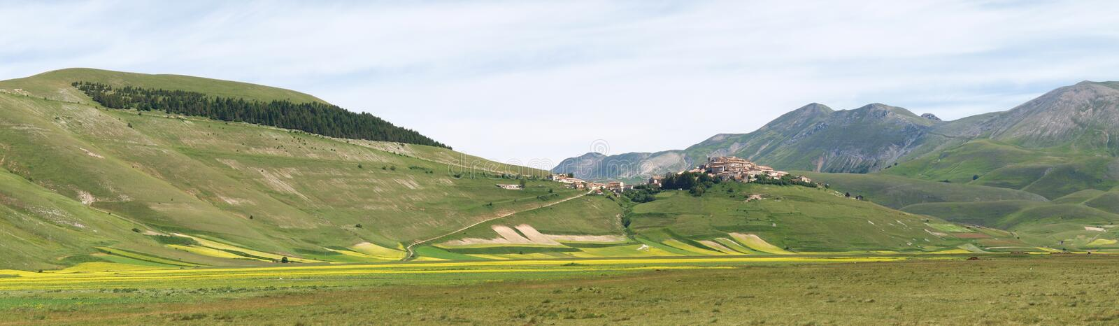 Castelluccio Di Norcia. Cultivation Of Lentils Stock Photo