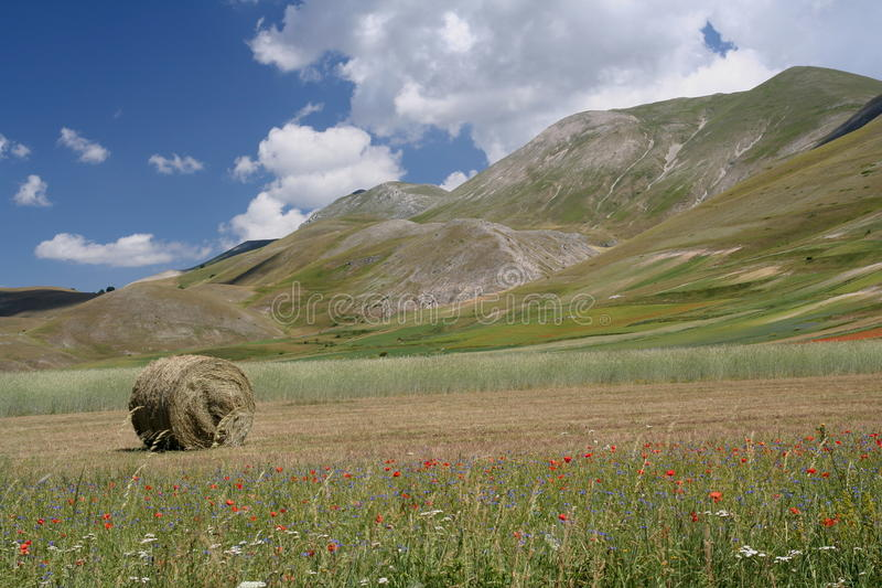 Download Castelluccio Di Norcia / View Stock Photo - Image: 25830752