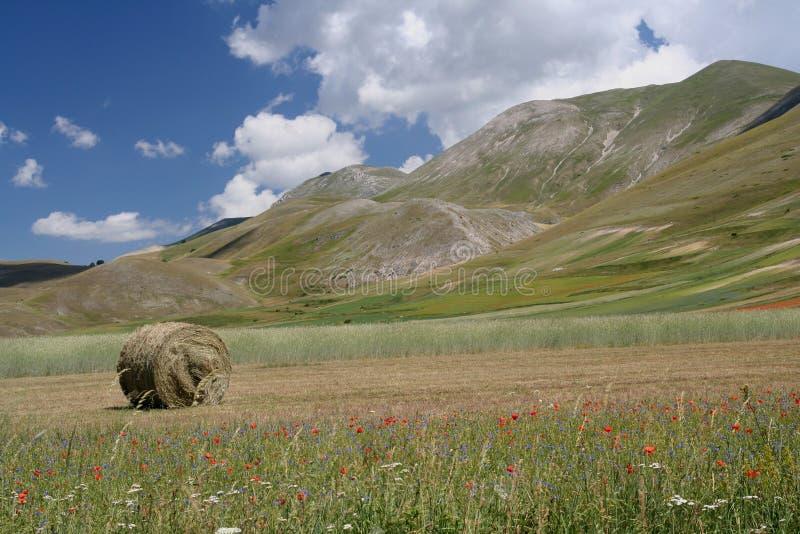 Castelluccio di Norcia/vista fotografia de stock