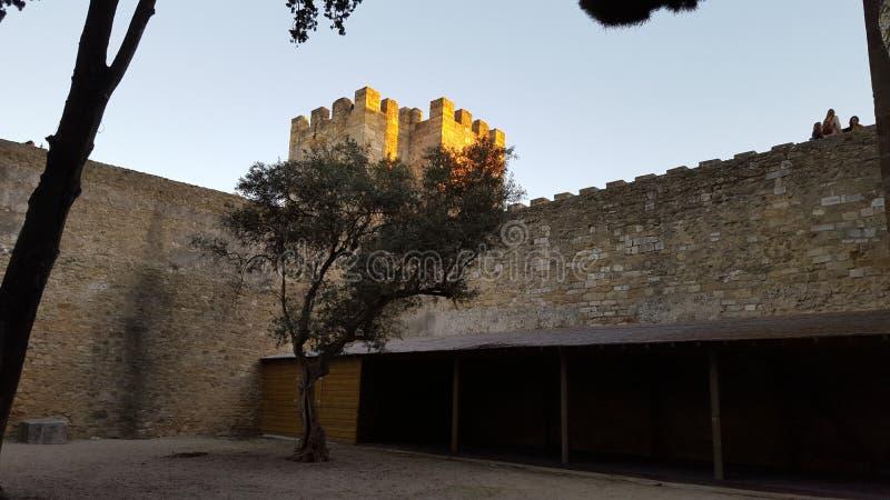 Castelo royaltyfri foto