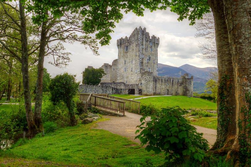 Castelo bonito de Ross em Ireland fotos de stock