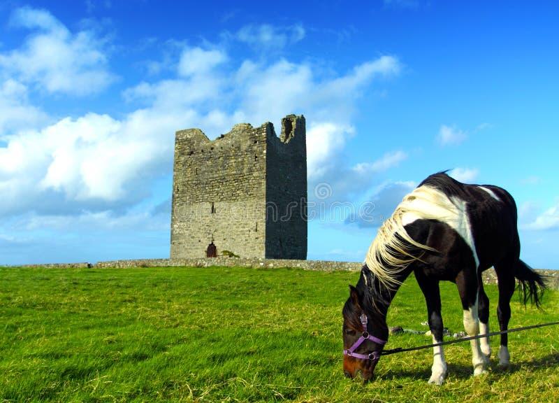 Castelo Co. Sligo Ireland de Easky imagens de stock