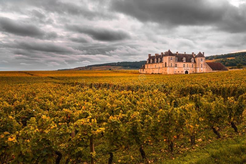 Castelo com os vinhedos na estação do outono, Borgonha, França foto de stock royalty free