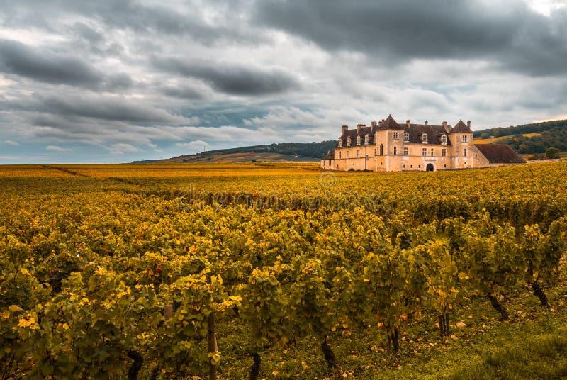 Castelo com os vinhedos na estação do outono, Borgonha, França imagens de stock royalty free