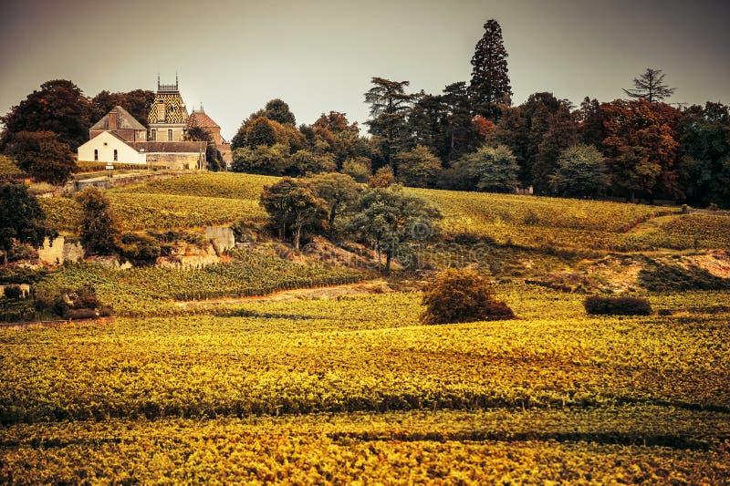 Castelo com vinhedos, Borgonha, France fotografia de stock royalty free