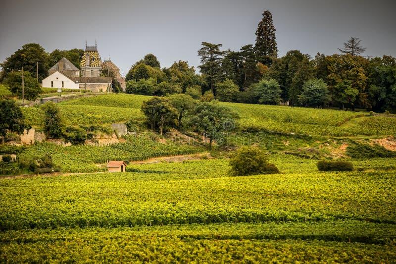 Castelo com vinhedos, Borgonha, France imagem de stock