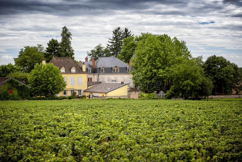Castelo com vinhedos, Borgonha, France imagem de stock royalty free