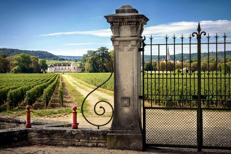 Castelo com vinhedos, Borgonha, Montrachet france imagens de stock