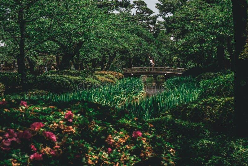 Castelo da ponte do jardim de Japão imagem de stock
