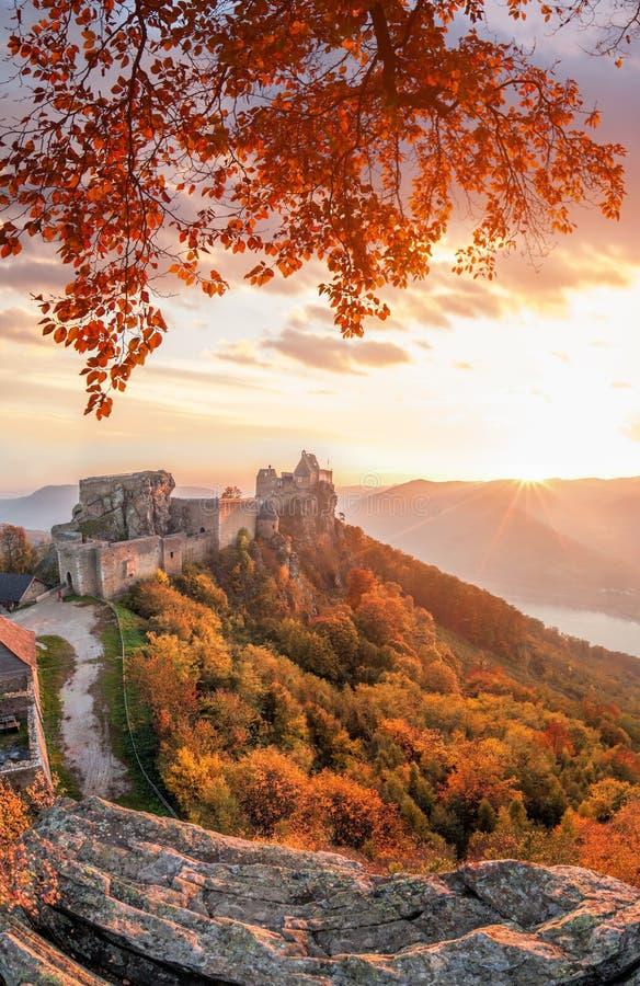 Castelo de Aggstein com a floresta do outono em Wachau, Áustria imagem de stock royalty free