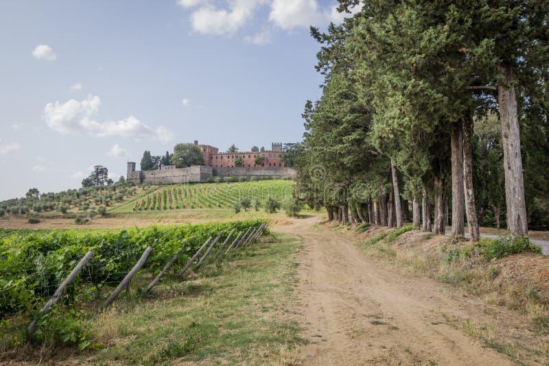 Castelo de Brolio e os vinhedos próximos imagens de stock royalty free