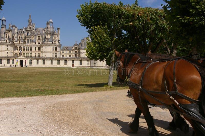 Download Castelo de Chambord foto de stock. Imagem de palácio - 12812788