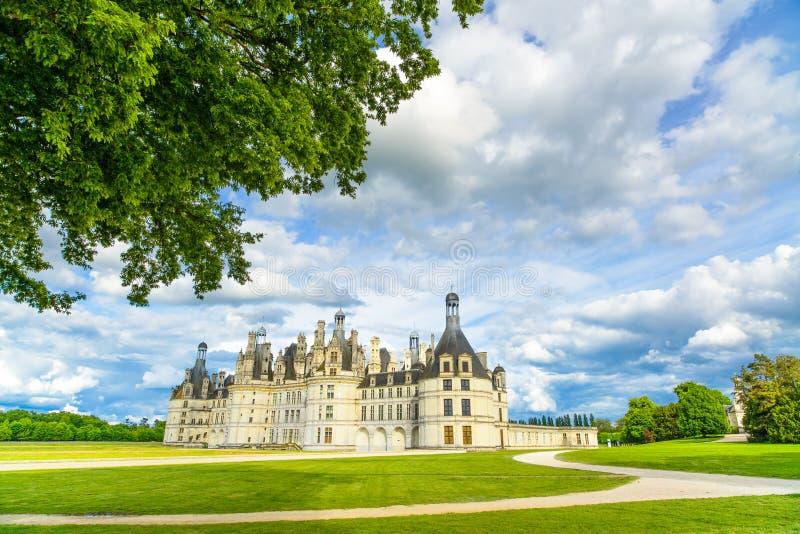 Castelo de Chambord, castelo do Unesco e árvore franceses medievais. Loire, França imagens de stock