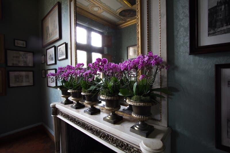 Castelo de Chenonceau imagem de stock royalty free