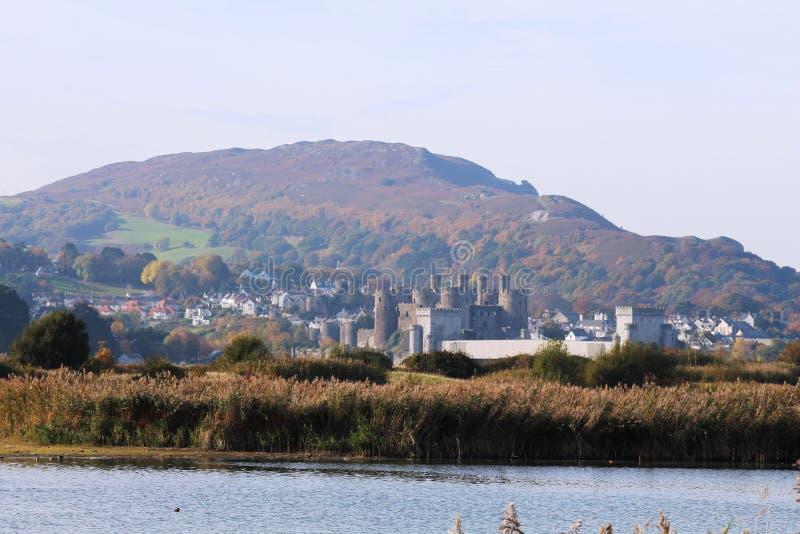 Castelo de Conwy, Gales norte de RSPB Conway imagens de stock royalty free