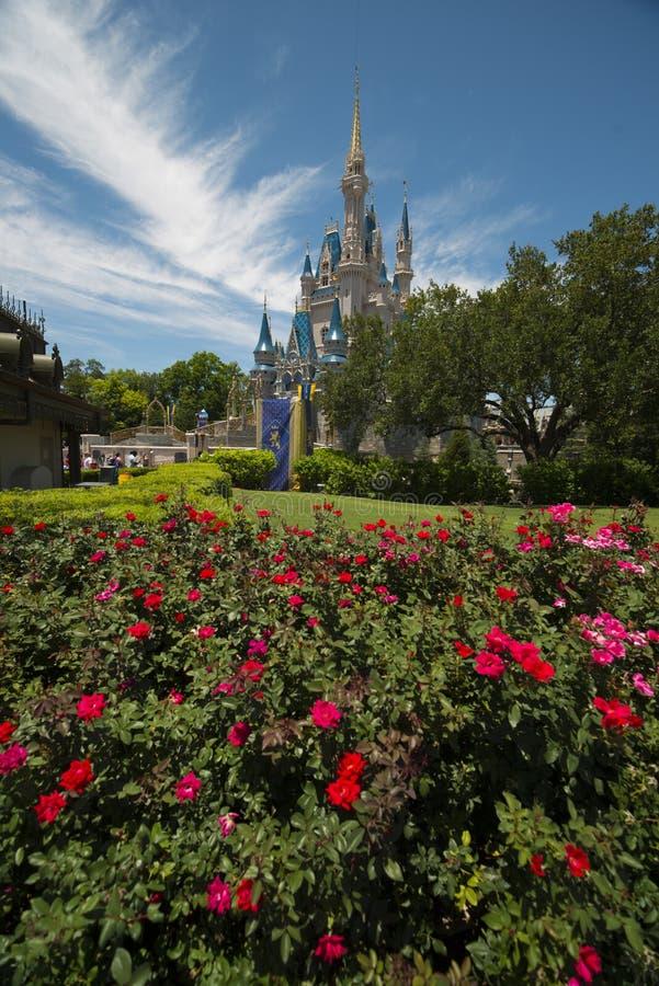 Castelo de Disney Orlando com rosea vermelho foto de stock royalty free