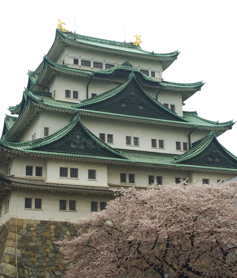 Castelo de Nagoya fotografia de stock royalty free