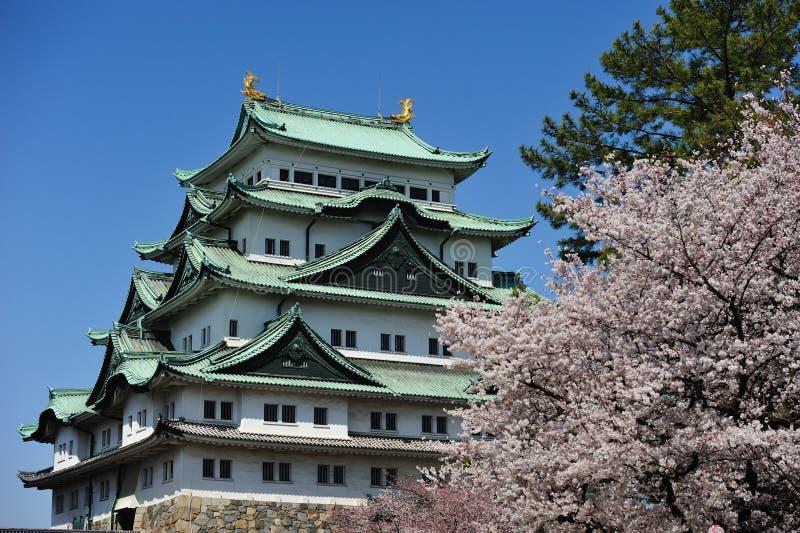 Castelo de Nagoya, Japão fotografia de stock royalty free