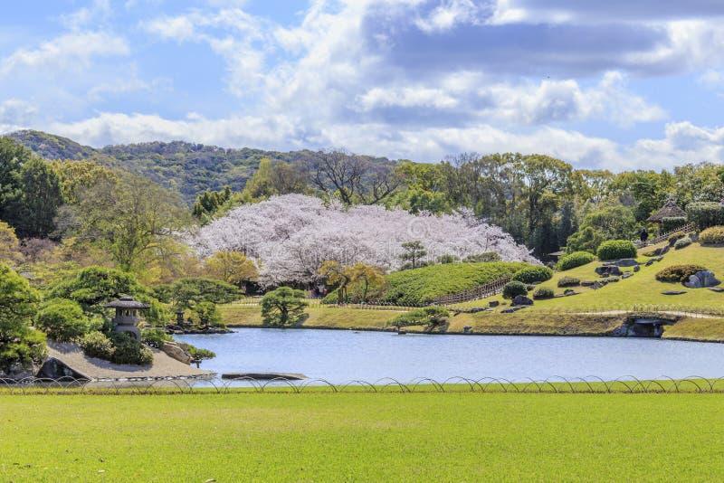 Castelo de Okayama fotos de stock royalty free
