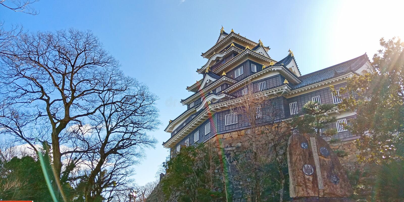 Castelo de Okayama, Japão imagens de stock royalty free