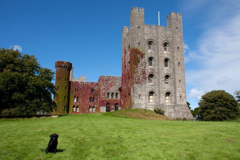 Castelo de Penryhn foto de stock royalty free
