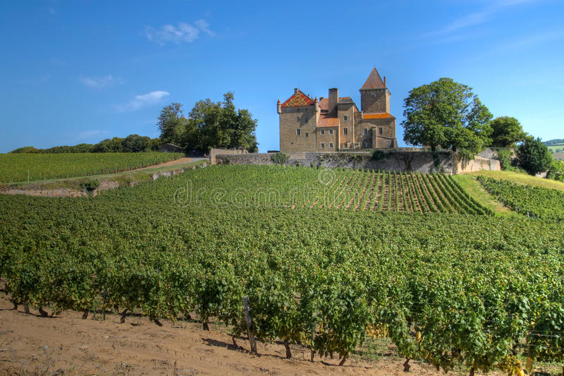 Castelo de Pierreclos, Borgonha, France imagem de stock royalty free
