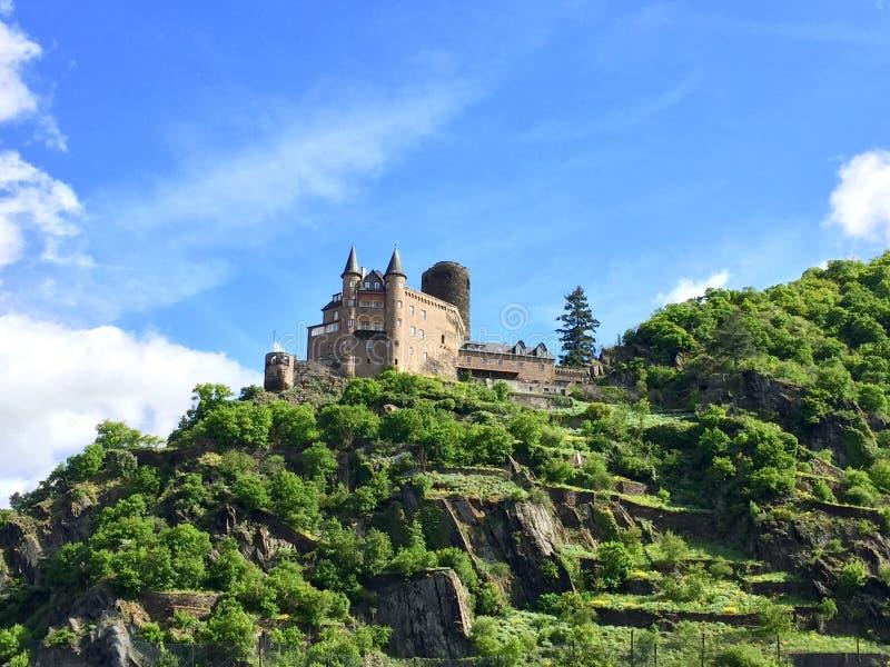Castelo de Rhine River fotos de stock