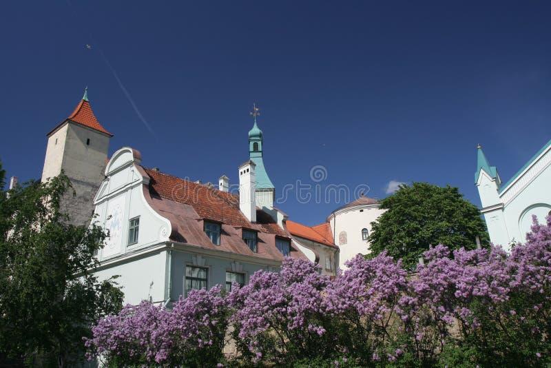 Castelo de Riga imagem de stock