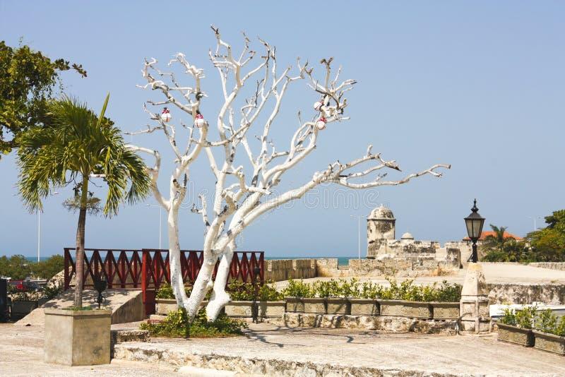Castelo de San Felipe de Barajas fotos de stock royalty free