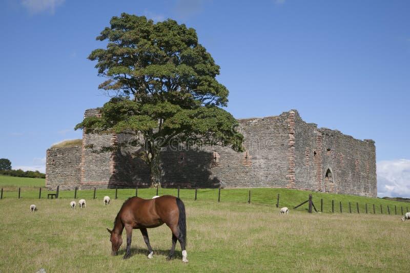 Castelo de Skipness fotos de stock royalty free
