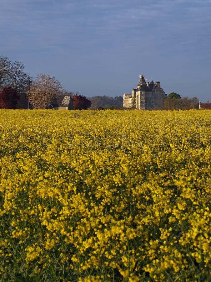 Castelo de um campo do rapeseed, Usseau de Motte fotos de stock royalty free