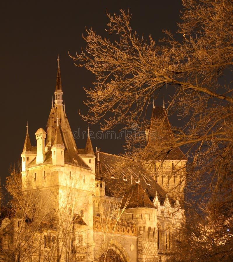 Castelo de Vajdahunyad fotografia de stock royalty free