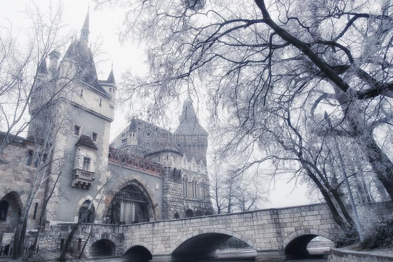 Castelo de Vajdahunyad em Budapest, Hungria foto de stock royalty free