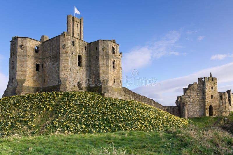 Castelo de Warkworth na mola imagens de stock royalty free